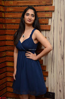 Radhika Mehrotra in a Deep neck Sleeveless Blue Dress at Mirchi Music Awards South 2017 ~  Exclusive Celebrities Galleries 044.jpg