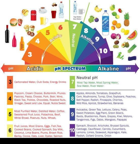dieta alcalina oms)