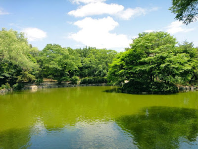 Lake at Changdeokgung Palace Seoul