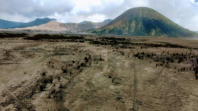 La vegetación sobre el desierto de ceniza que rodea el Bromo es exigua. Al fondo, el monte Batok.
