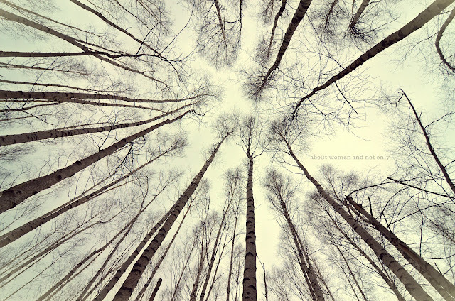 Priveste cerul innourat