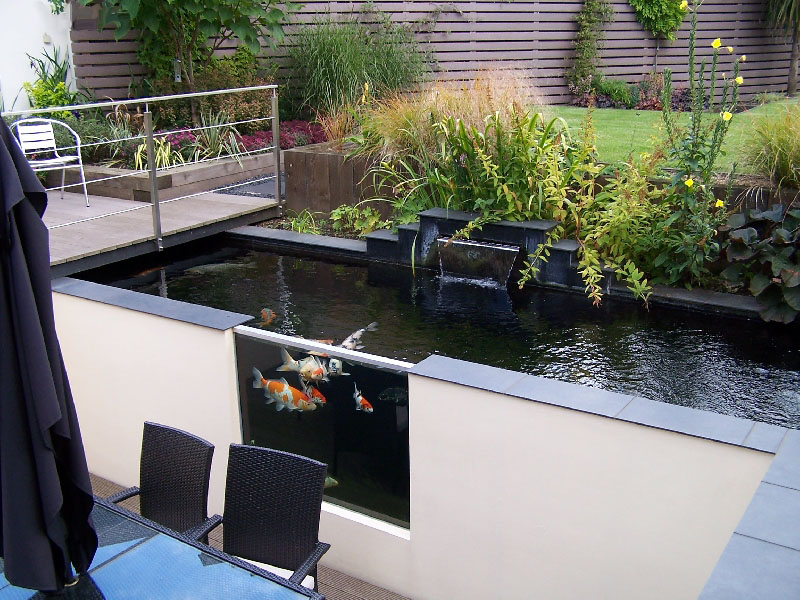 บ อปลาคราฟต ดกระจก Koi Pond Design Ponds Backyard Pond Design