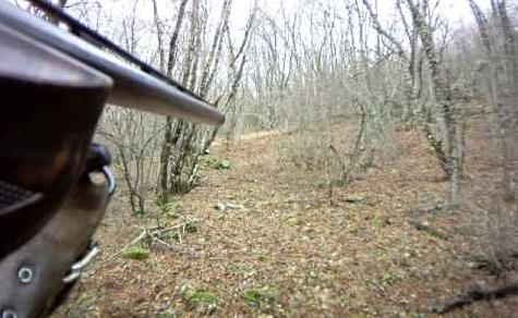 Φθιώτιδα: Τον πέρασε για αγριογούρουνο και τον πυροβόλησε!