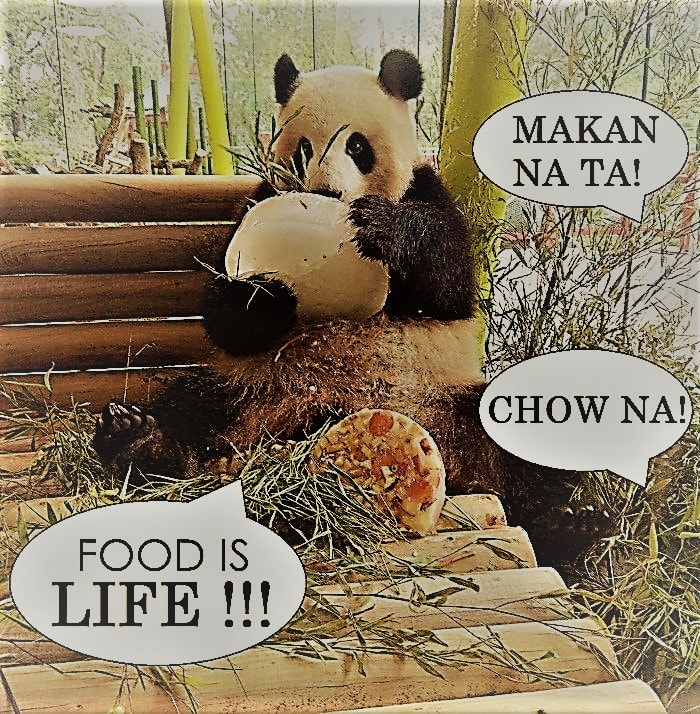 Why you need foodpanda in life