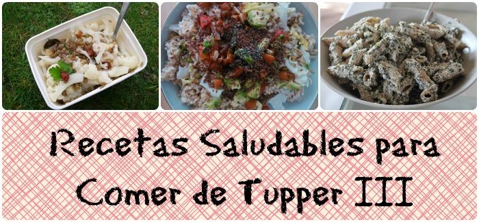 Recetas saludables para comer de tupper