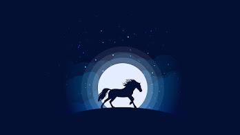 Horse, Silhouette, Digital Art, Minimalist, 4K, #4.557