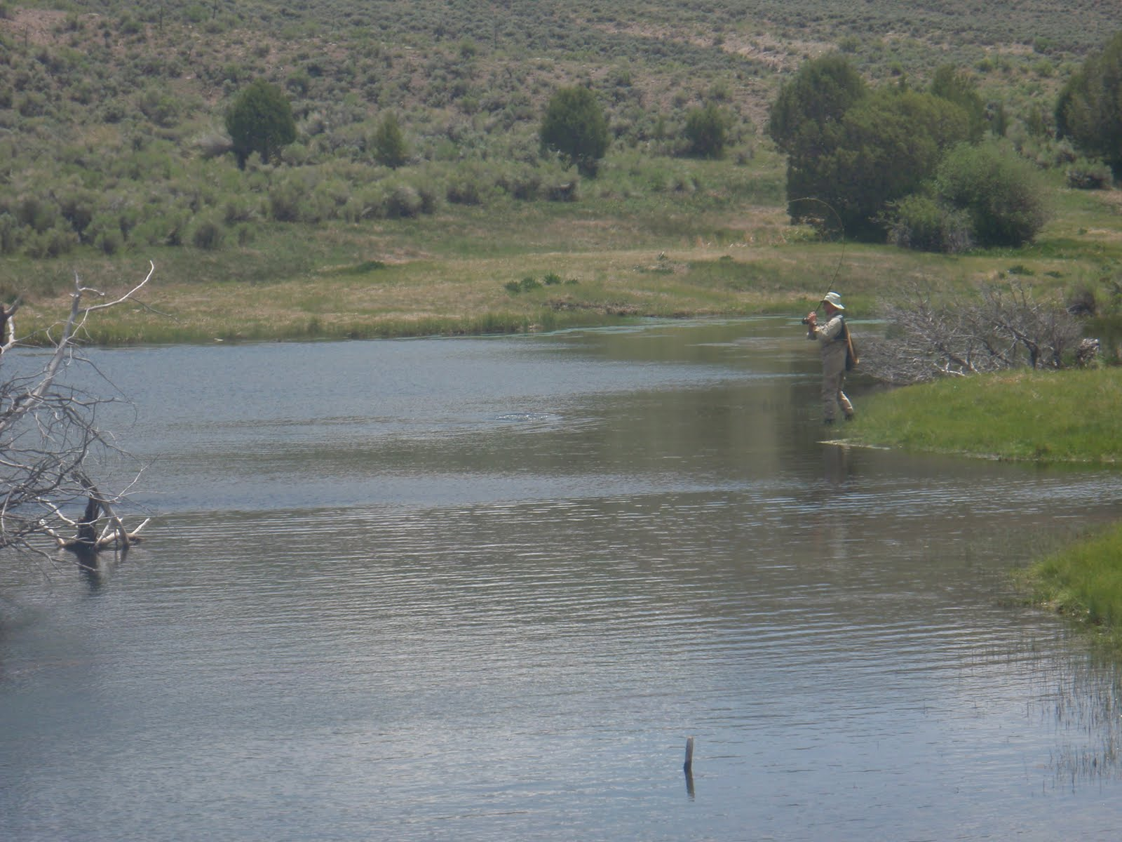 Southern utah fly fishing quiet fly fisher guide service for Trout fishing utah