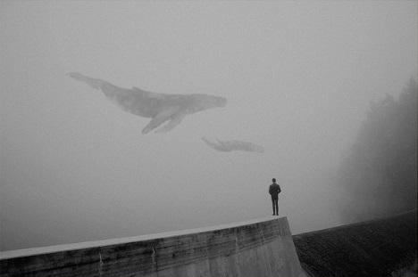 Foto por Martin Vlach