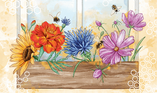 Bee-Friendly Flowers: A Guide To Easy-To-Grow Annuals