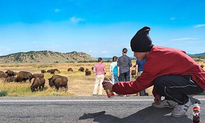 el villano arrinconado, humor, chistes, reir, satira, grafitero, Grand Teton, bisontes