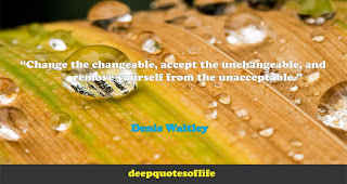 """Change the changeable, accept the unchangeable, and remove yourself from the unacceptable.""  ― Denis Waitley"