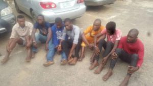 News: Police 'arrest' Alsatian dog for robbery in Lagos …parade Uber driver, others for murder of GUS winner