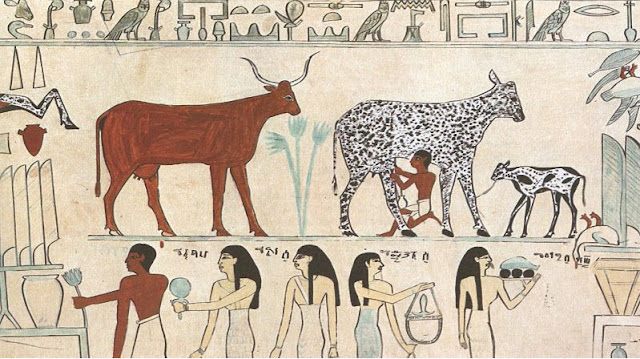 Cheese-in-Ancient-Egypt