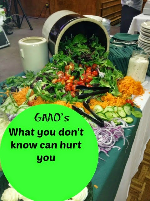 salad greens and vegetables on buffet table - GMO sign