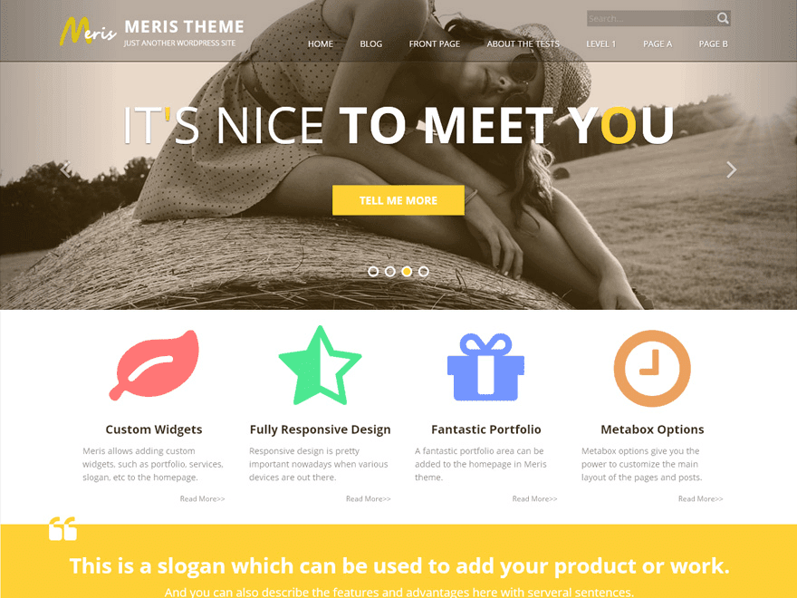 Meris - free fashion creative theme