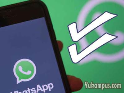 cara menghilangkan centang dua whatsapp