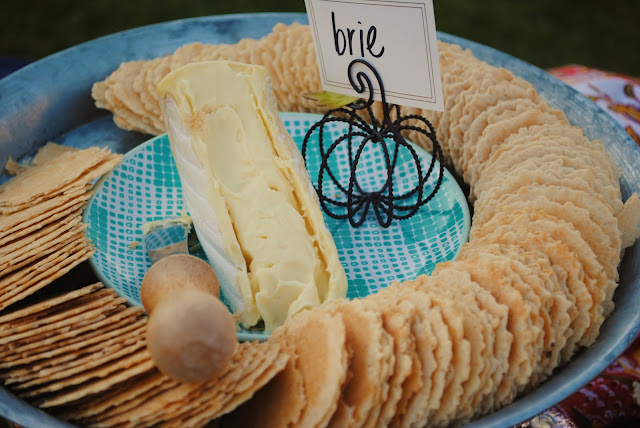 Brie heese and crackers appetizers, Summer lake party