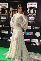 Sonal Chauhan in a stonework Floor Length Silver Designer Gown at IIFA Utsavam Awards March 2017 050.JPG