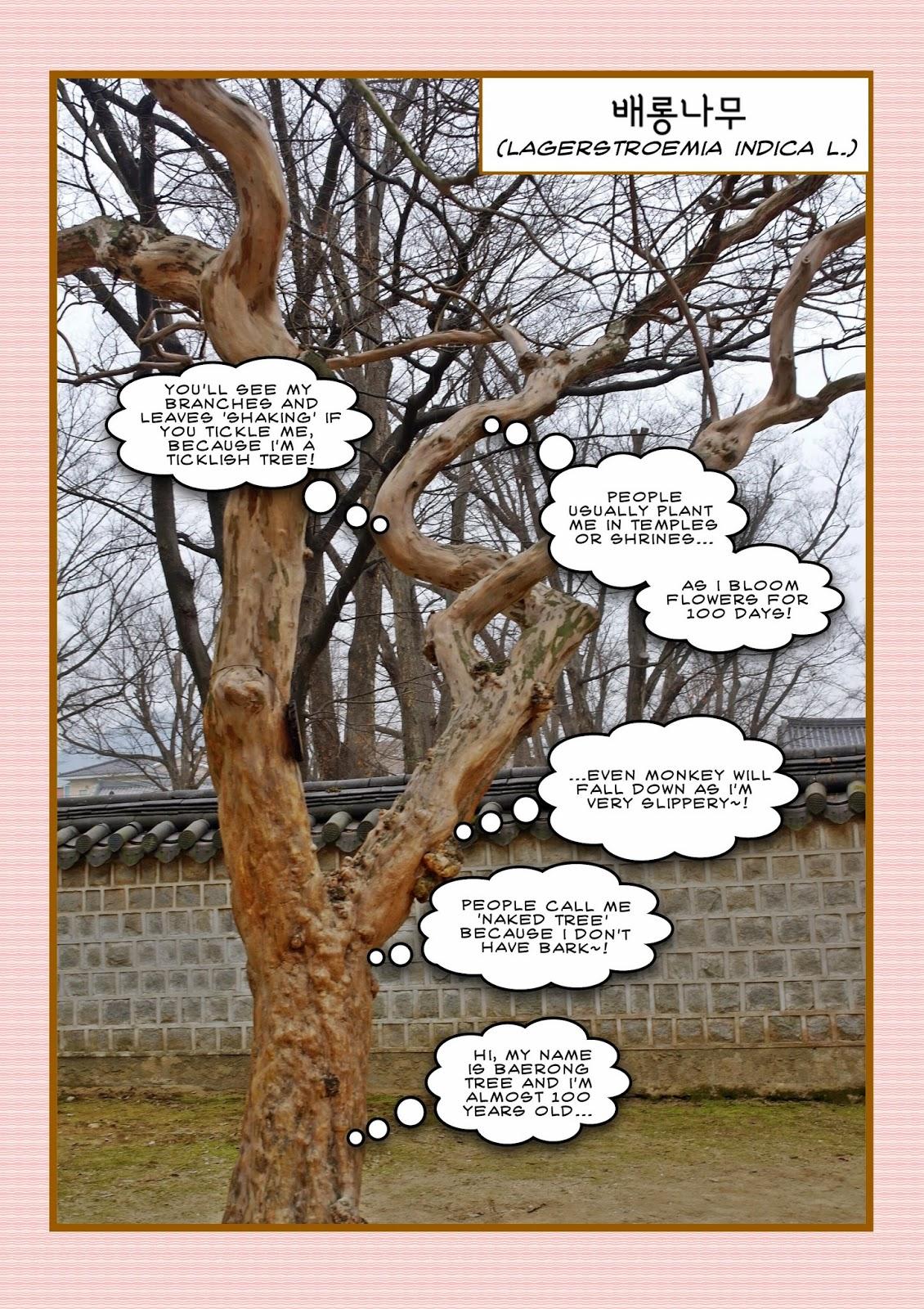 Must Visit in Jeonju: Gyeonggijeon Main Hall 경기전 정전 | meheartsoul.blogspot.com