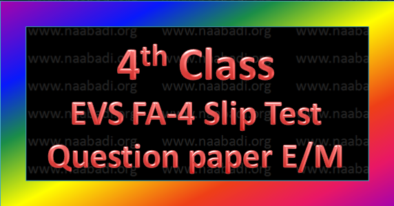FA-4 4th Class EVS Slip Test Question Paper E/M