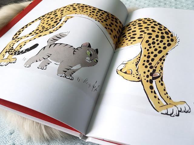 """Galia Bernstein  - """"Jestem kotem"""" - Nasza Księgarnia - książeczki dla dzieci"""