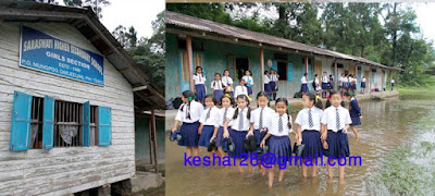 Saraswati Higher Secondar School Girls Section