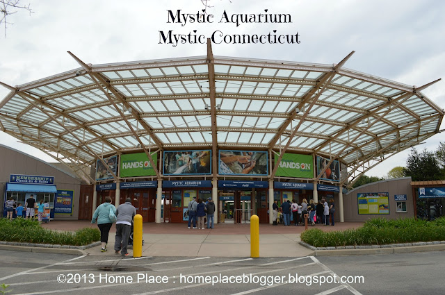 folks at the Mystic Aquarium invited some of the local Connecticut
