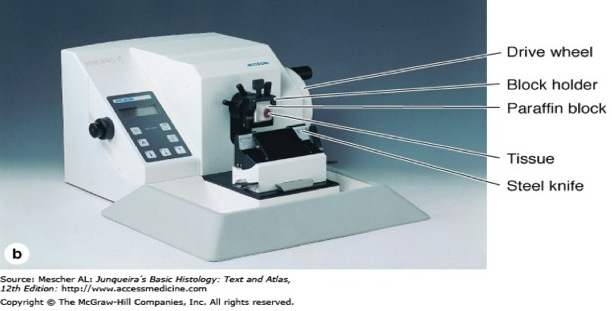 meaning to cut is a sectioning instrument that allows for the cutting of extremely thin slices of material known as sections microtomes