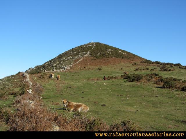 Area Buyera, picos Grandamiana y Plantón: Praderas en el Plantón