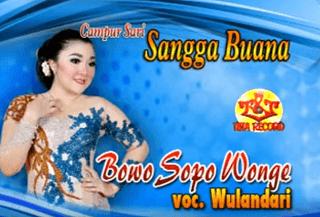 Lirik Lagu Sopo Wonge