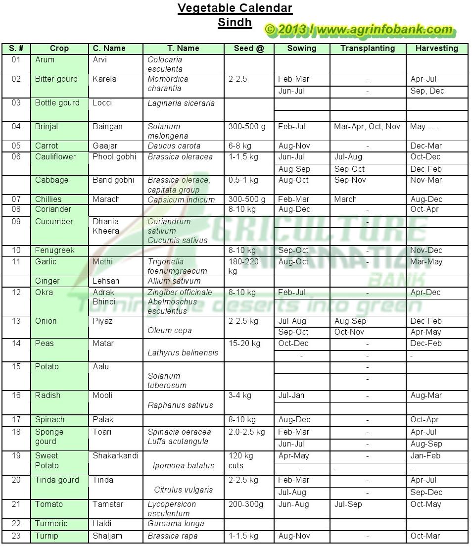 Crop calender also vegetable sindh pakistan agriculture information bank rh agrinfobankspot