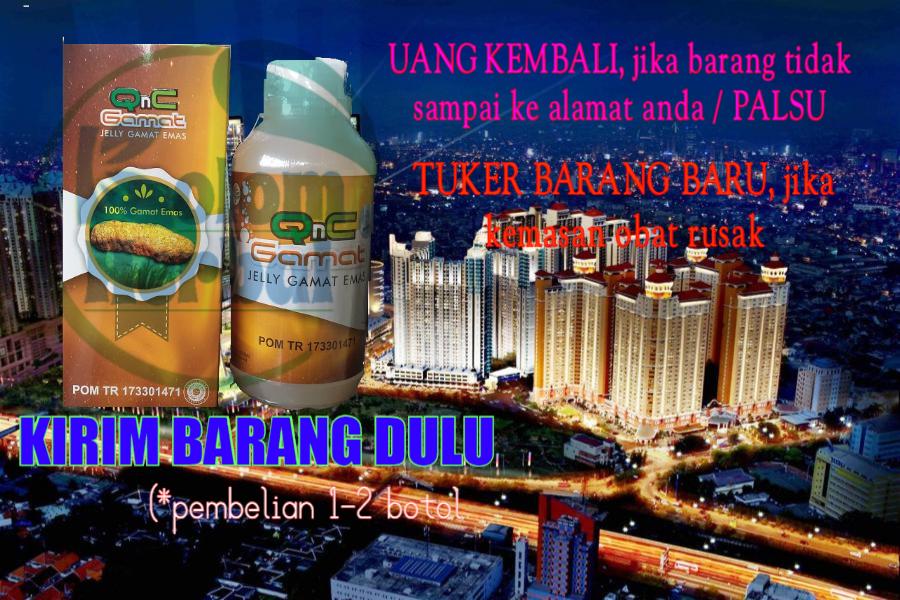 Agen Qnc Jelly Gamat Di Jakarta Barat