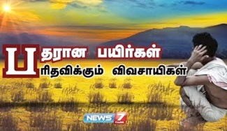 TheervuPalam 31-01-2018 News 7 Tamil