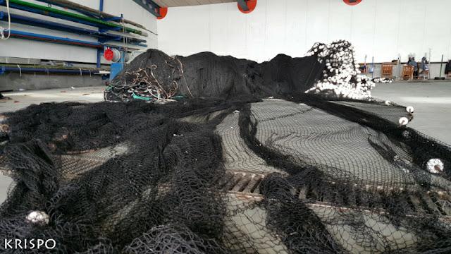 red negra de pesca preparada para su cosido junto sillas de rederas