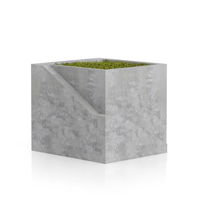 3D model free -  Plants_17