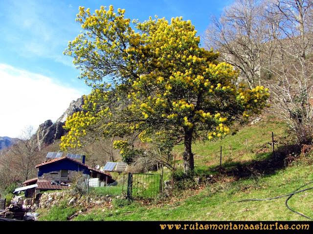 Ruta Pico Vízcares: Cabaña en la majada Degoes