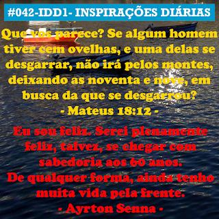 042-IDD1- Ideia do Dia 1