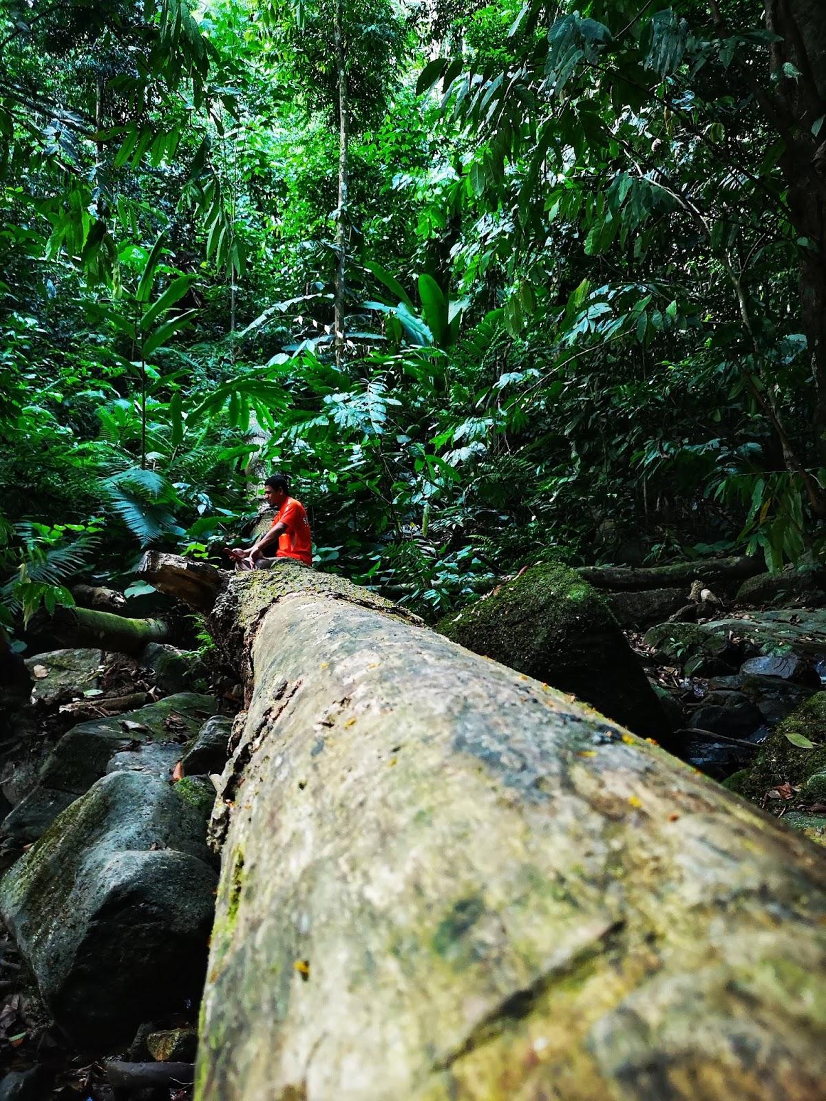 Mendaki Gunung Telapak Buruk & Gunung Berembun, Jelebu 3