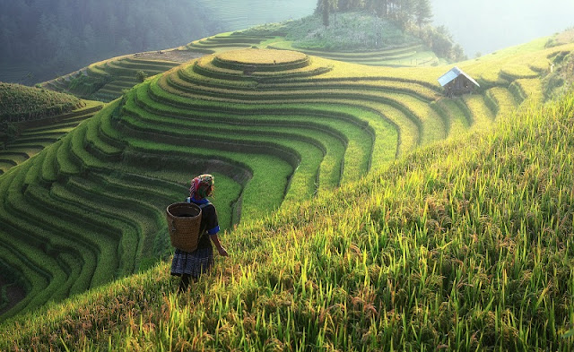 Sapa...if you are not keen on trekking??