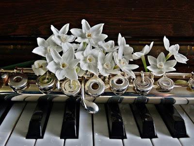 Làm thế nào để chọn được 1 cây đàn piano phù hợp