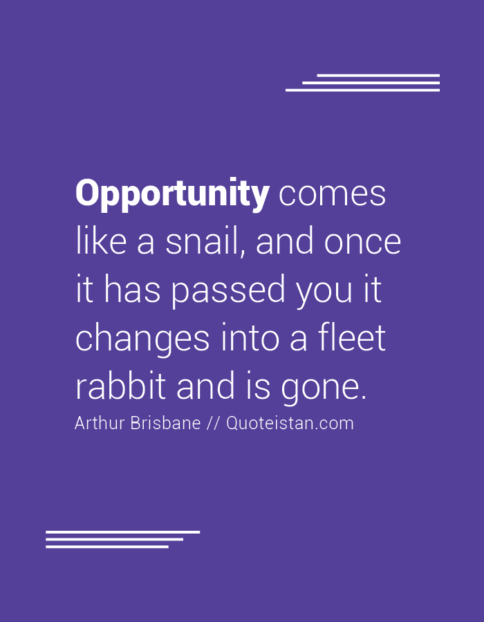 Opportunity comes like a snail, and once it has passed you it changes into a fleet rabbit and is gone.