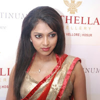 Amala paul hot in saree