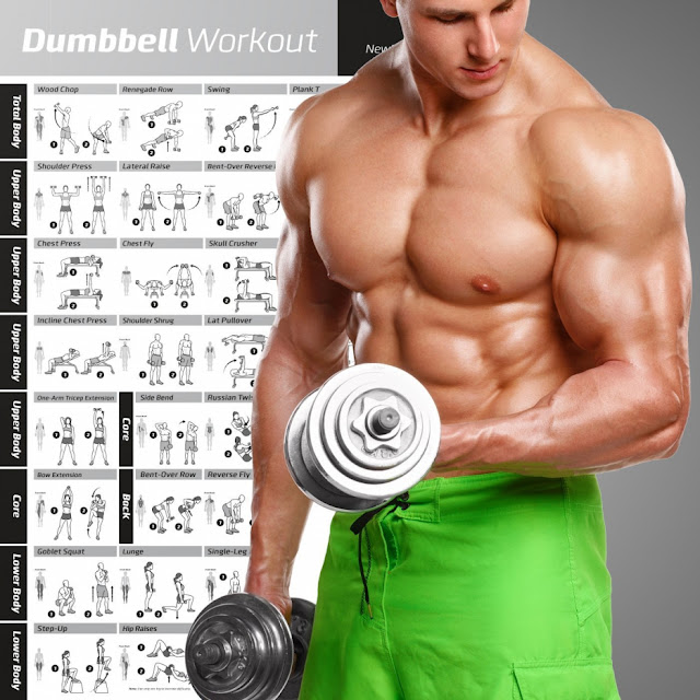 Bodybuilding Training Programs