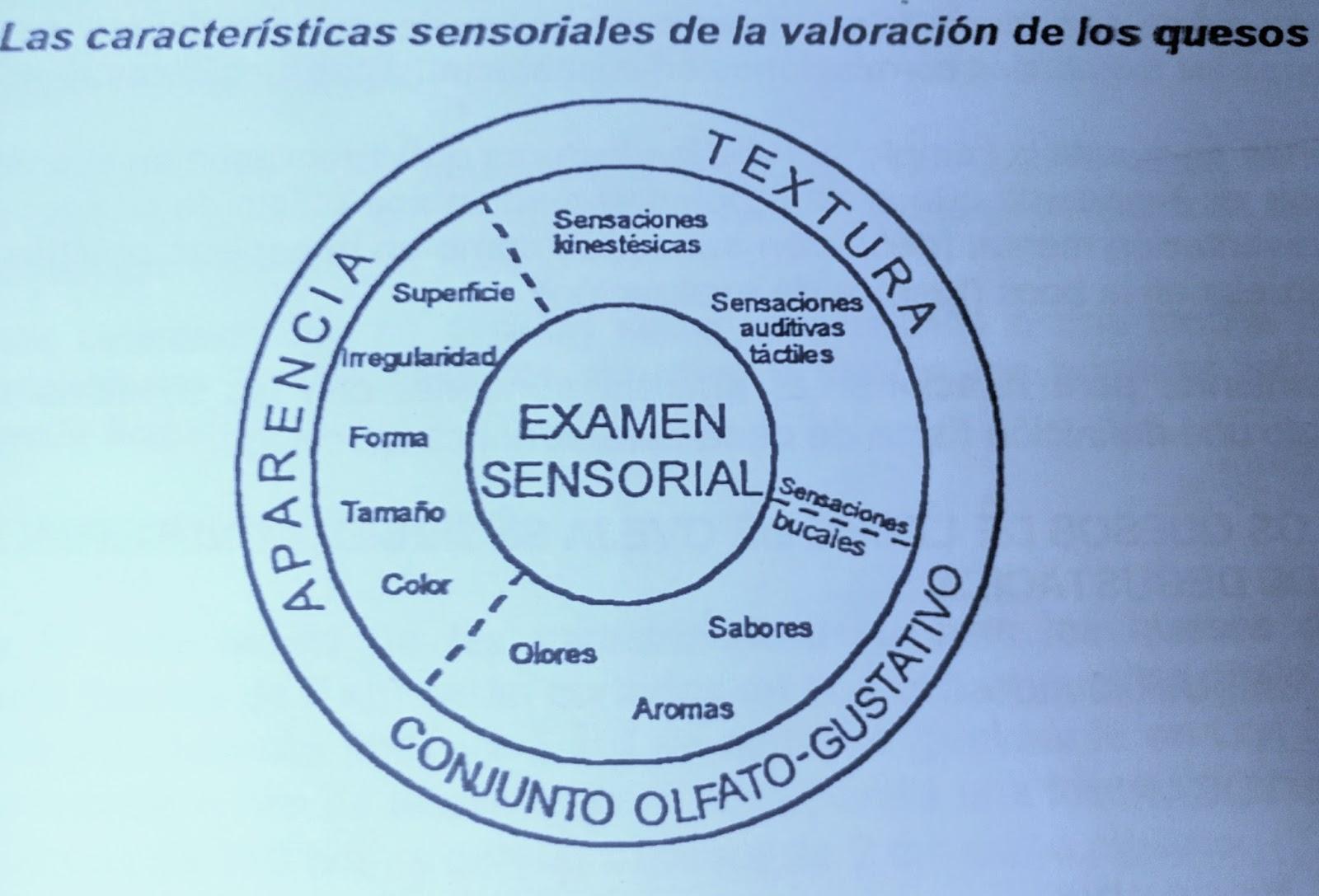 EL AFINADOR DE QUESOS : Tirotécnia (perfeccionamiento en temas de ...
