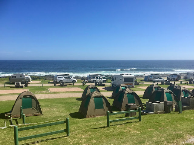 Campsite in Tsitsikamma National Park, Garden Route, South Africa