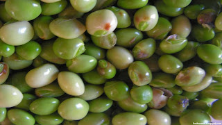 pigeon pea fruit images wallpaper