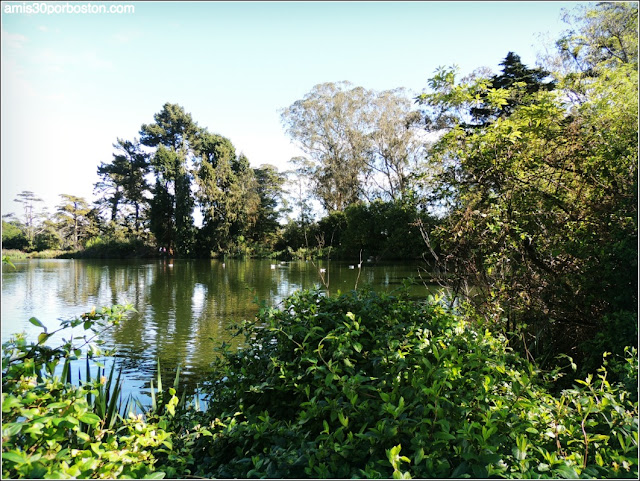 Golden Gate Park: Stow Lake & Strawberry Hill Island