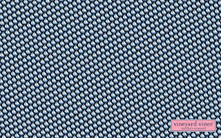 Cute Preppy Deskstop Wallpapers Canadianprep Vineyard Vines Wallpaper