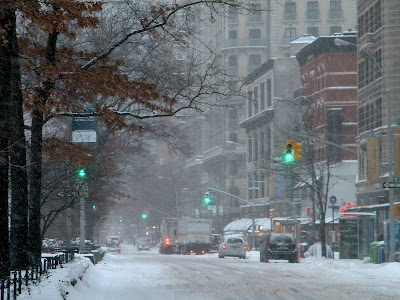 Snow Storm New York free stock photos