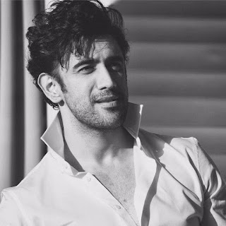 Amit Sadh in sultan, movies, neeru bajwa and, hairstyle in sultan, age, wiki, biography